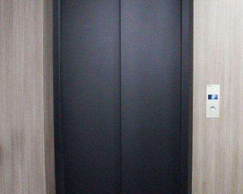 Porta de Pavimento AL com VVF